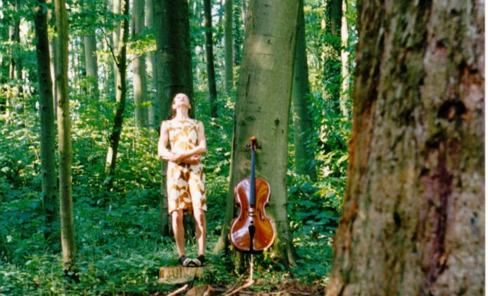 cello, site, performance, installation