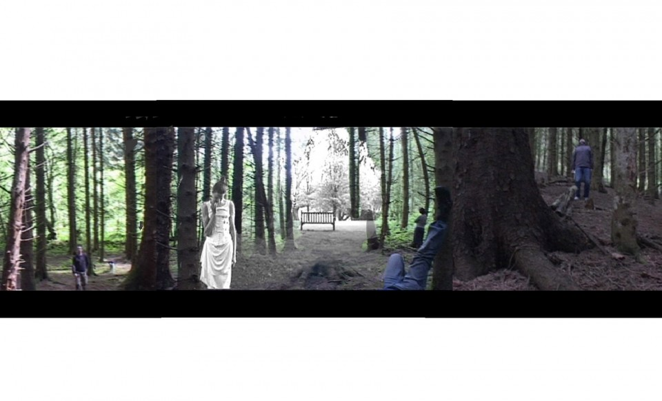 at the still point, video, dance, forest